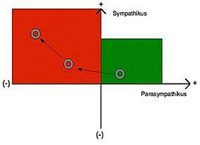 HRV-Analyse 3